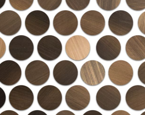 Brushed Cooper Rounds Metal Tile from The Tile Shop