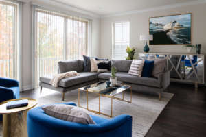 Living Room Design Washington DC